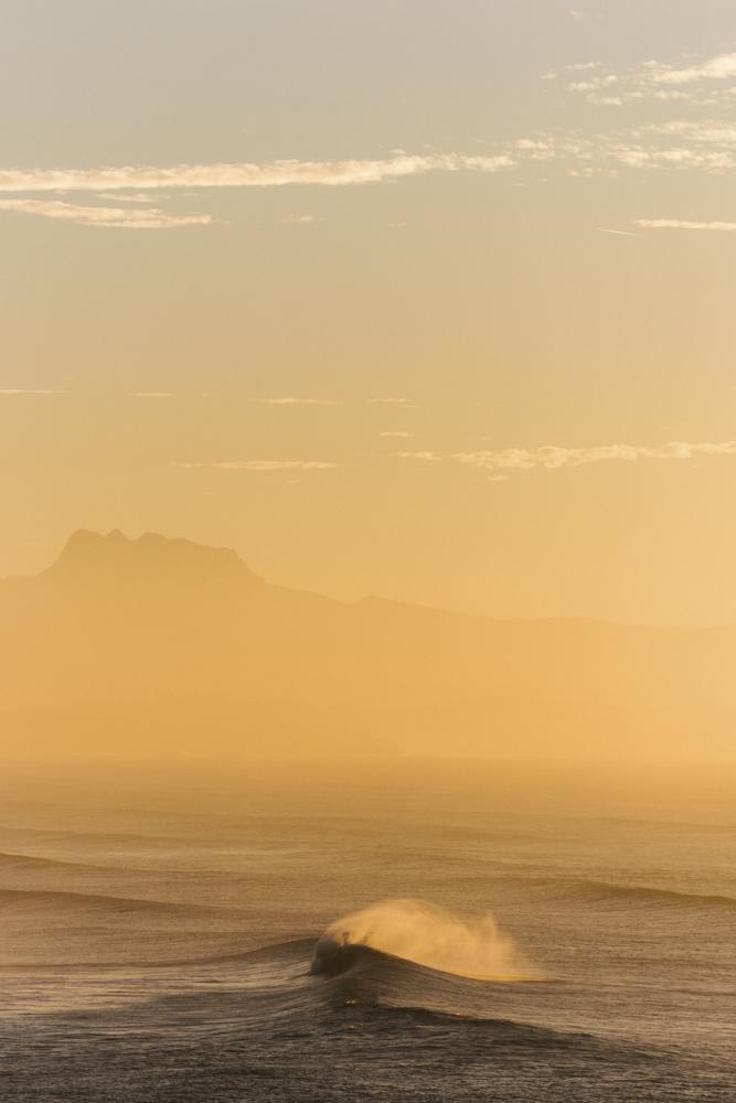 Gold Palette - Photographie prise par Thomas Lodin